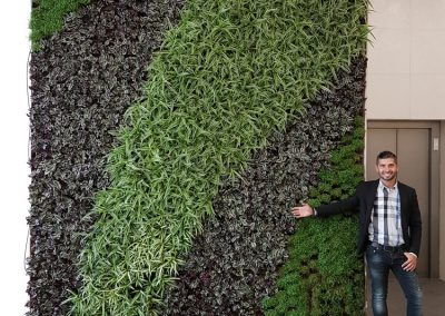 Zemen Rai Vertical landscaping (3)