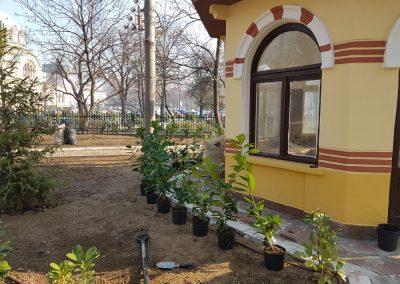 Zemen Rai_Planting of decorative vegetation (1)
