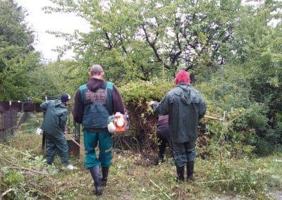 Zemen_Rai overgrown terrains (6)