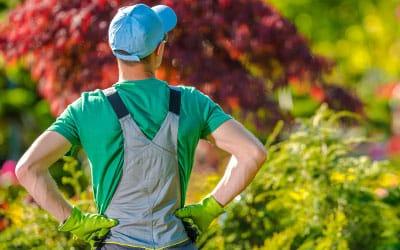 Ръководител (бригадир) на екип по озеленяване